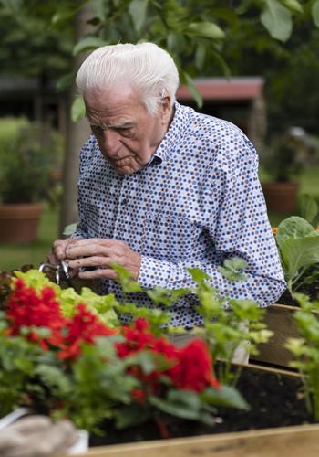 bezoeker de buitenhof onderhoudt groenten bij de buitenhof tilburg