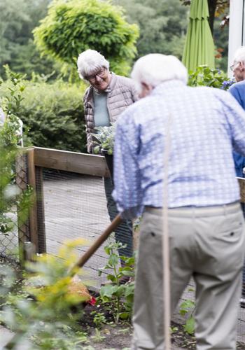 bezoekers in de natuur bij dagbesteding de buitenhof tilburg