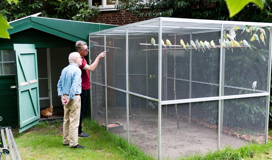 Vogels voeren in tuin de buitenhof tilburg