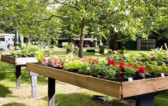 plantenbakken tuin de buitenhof